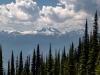 Mount-Revelstoke National Park - Juillet 2021